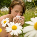 Alergicy – rekomendujemy stronę internetową dla Was